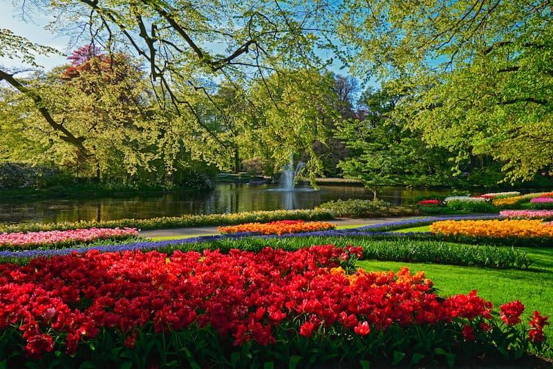 Keukenhof Bahçeleri Hollanda