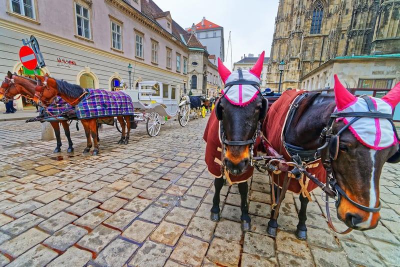 Stephansplatz - Viyana Turistik Harita