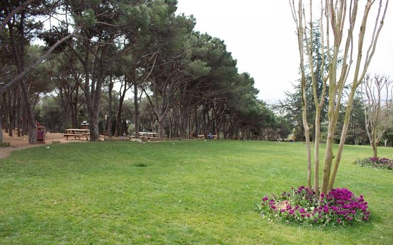 Büyük Çamlıca Tepesi Piknik Alanı