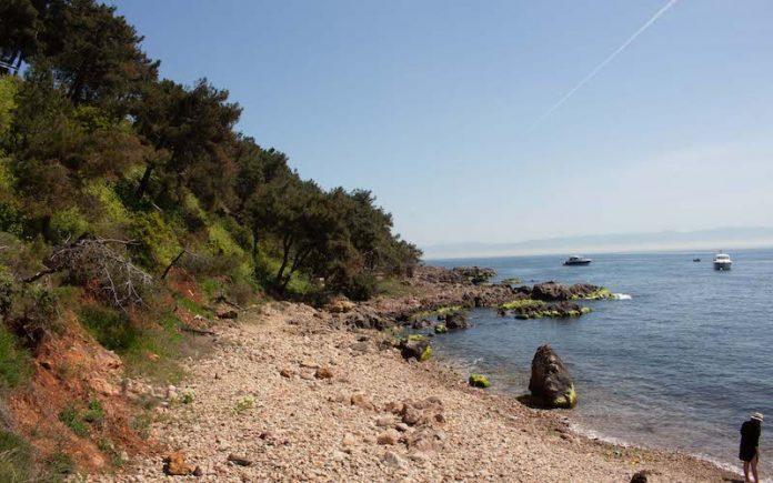 Burgazada Plajları