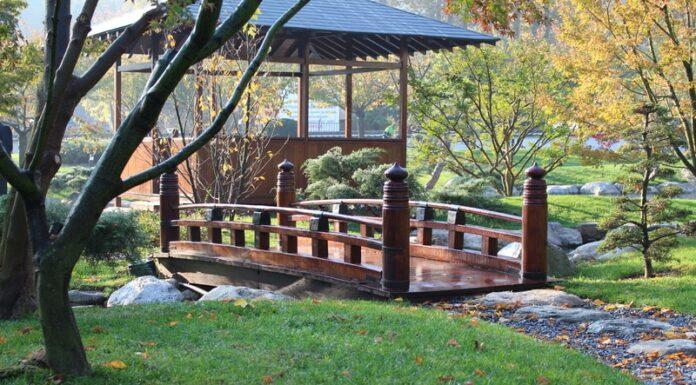 Baltalimanı Japon Bahçesi