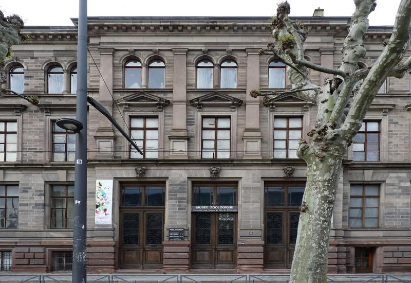 Strazburg gezilecek yerler blog